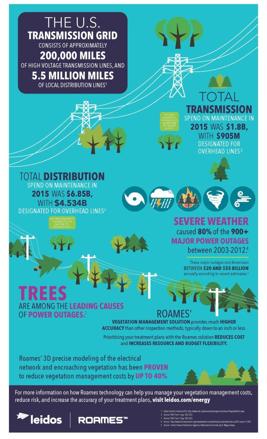 Leidos Roames infographic