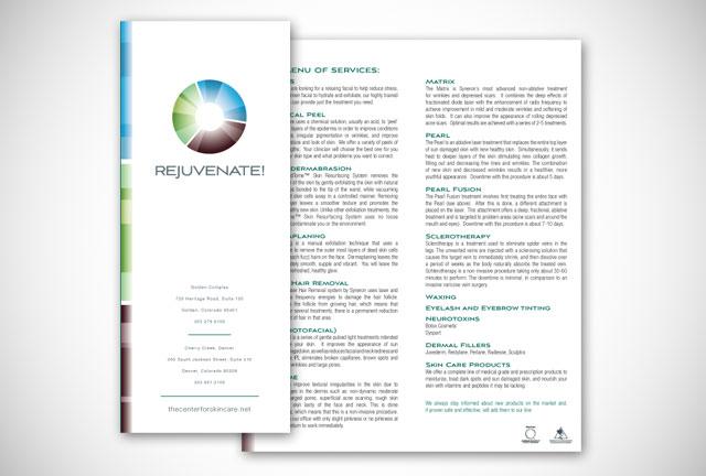 CCS brochure